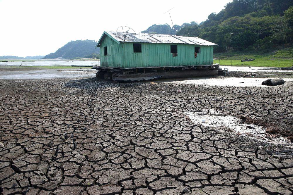 Fotografía del 23 de octubre de 2015 en que se ve una casa en medio del Lago do Aleixo, sin agua, debido al descenso del nivel del Rio Negro, en la zona este de la ciudad de Manaus en la Amazonía.
