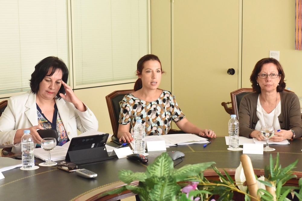 La consejera de Educación (iz.) y la vicepresidenta del Gobierno (c) durante la reunión del Consejo General de Empleo.