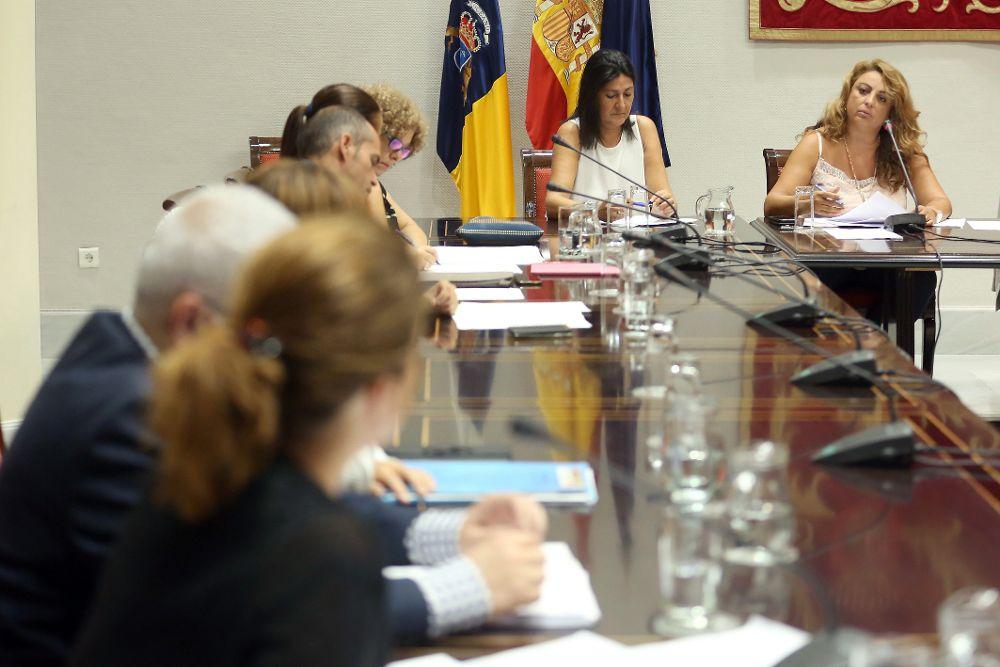 La consejera de Empleo, Políticas Sociales y Vivienda del Gobierno de Canarias, Cristina Valido (d, fondo), durante su comparecencia.