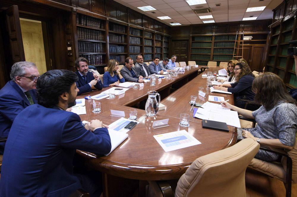 Reunión de la comisión de seguimiento de Las Chumberas, esta mañana, en Madrid.
