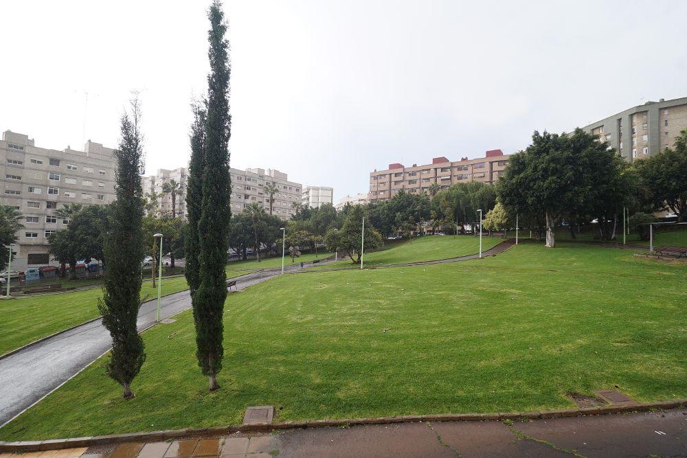 A licitación la 'puesta a punto' del parque Las Indias por 2,5 millones