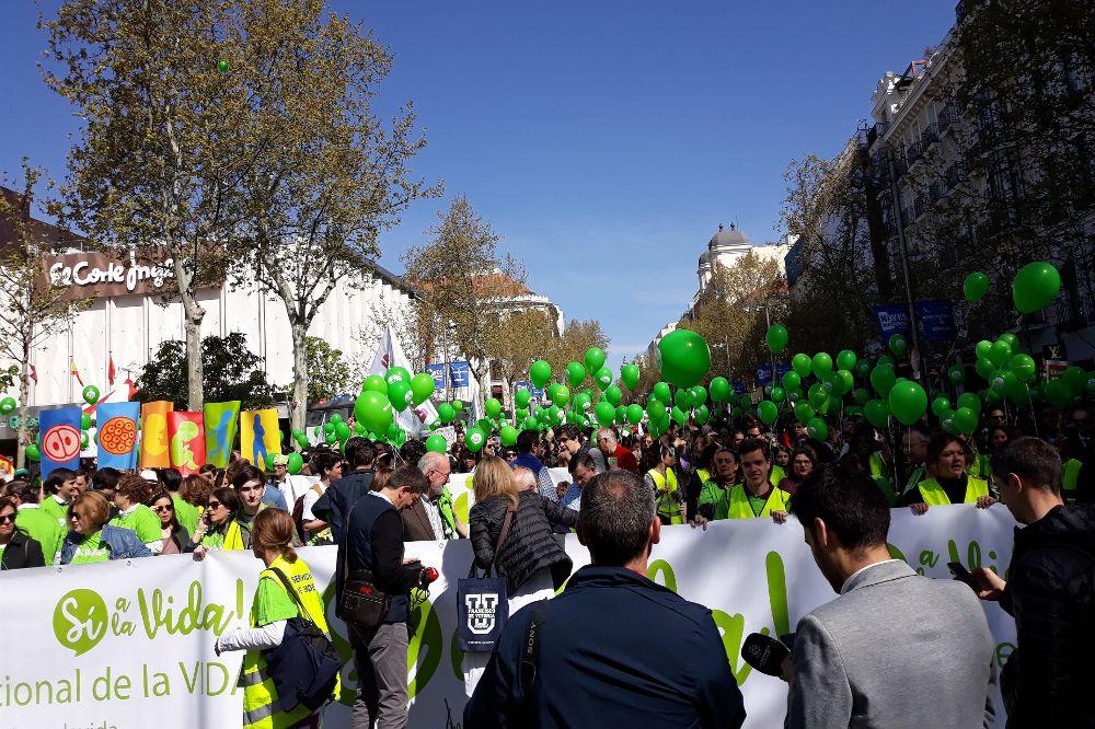 Manifestación provida del domingo 24 de marzo de 2019 en Madrid.